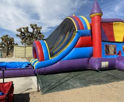 Red and Blue Colorful Dual Lane Combo Waterslide